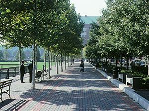 Pier A Park 300x224
